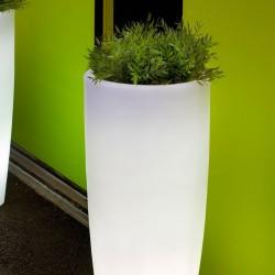 macetero-iluminado-bambu
