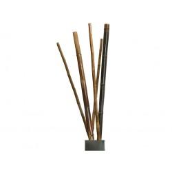 Tutores Bambú